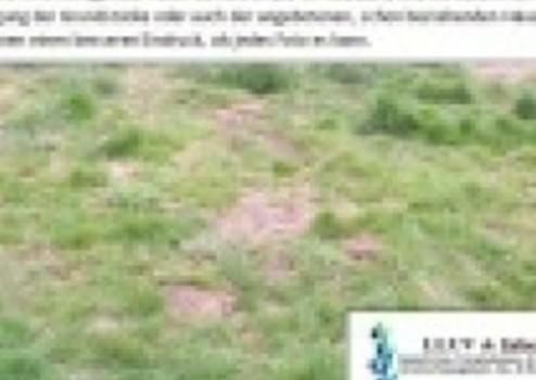 Grundstuck Kaufen Nordhausen Thur Landliche Lage Grundstuck Wird